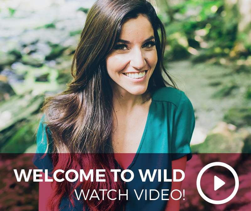 welcome-to-wild